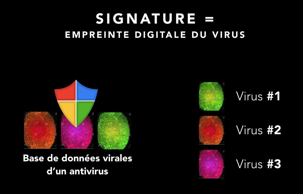 """Un antivirus contient une """"base de données"""" de virus. Leur but : connaître un maximum de virus pour mieux les bloquer."""