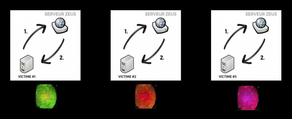 Chaque victime recevait une version presque unique de Zeus, que les antivirus avaient du mal à détecter.